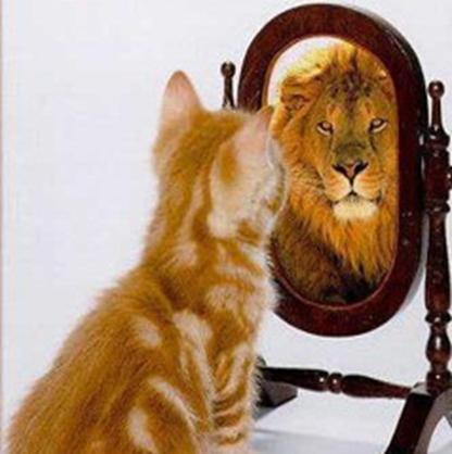 Погледни се в огледалота